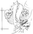 Dragon-Concept-1