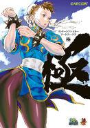Street Fighter 25th Anniversary Artbook