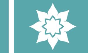 CS Flag 25.2