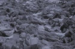 115 Tauron Civil War Dead