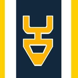 Tauron Flag