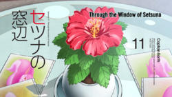Episode 11 - Through the Window of Setsuna - Title Slate