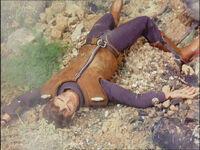 Brown dead-1-
