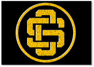 Cs logo gold