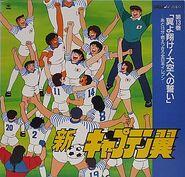 Shin Captain Tsubasa LD 13