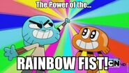 The Power of the....RAINBOW FIST