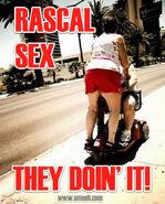 Steal-9-rascal