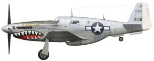 US, P-51C-11-NT, 44-10816, Evalina, 1Lt. Oliver Strawbridge, 26 FS, 51 FG, January 1945