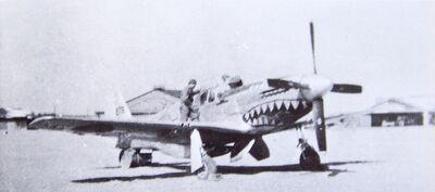 P-51 Evalina in Japan
