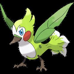 Florabri Sugi 4