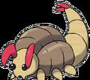 Larvabidae