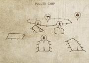 PullidCamp