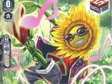 Dancing Sunflower (V Series)