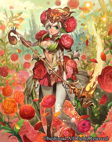 Ranunculus Flower Maiden Ahsha