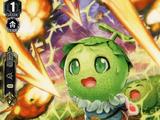 Amimelo Melon