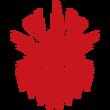 Icon Narukami