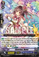 G-CB05-052EN-C (Sample)