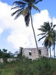 Saint Lucy plantation