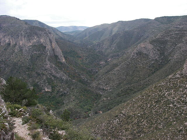 File:McKittrick Canyon view west from The Notch 2008.jpg