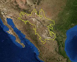 Chihuahua desert.jpg