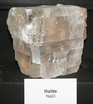 Halite09