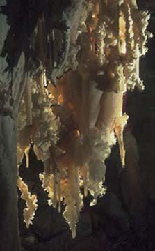 Carlsbad-spidercave1