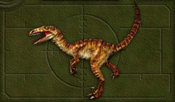 Carnivores 2 DINO6.TGA