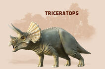 Triceratopscdhhd