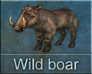 Carnivores Ice Age Wild boar call