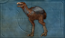 Carnivores Ice Age Diatryma