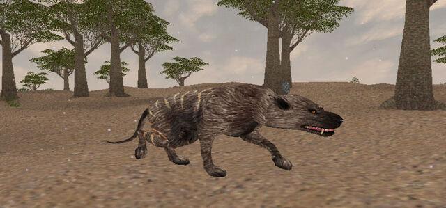 File:Hyenadon2.jpg