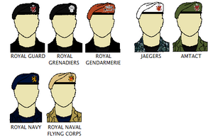 Armed Forces berets and uniforms
