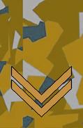 1990s desert sergeant camouflage rank