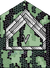 Sl-Seniorsergent