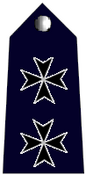 Chief Inspector badge