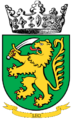 12th Infantry Cie insignia.png