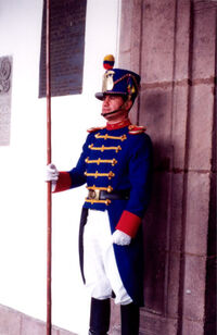 Royal Guard officer