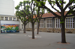 Samaniega Primary School