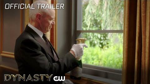 Dynasty Window Wash The CW