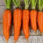 Carrot-kuroda-lg-215x215