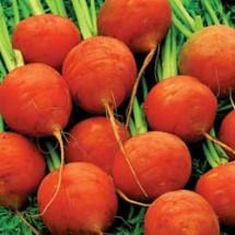 Carrot-paris-market-lg-215x215