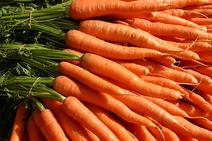 Wikia-Visualization-Main,carrot