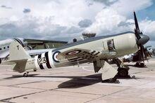 Hawker Sea Fury FB11, UK - Navy AN0842969