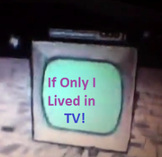 If Only I Lived in TV!