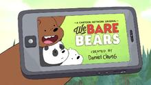 Bären wie Wir Intro