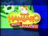 Hamtaro Mini Marathon