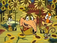 Camp Lazlo (Cartoon Network 2007 Airing)