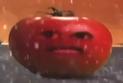 THFAOAO Tomato