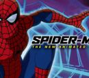Spider-Man: The New Animated Series