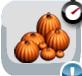 Garage-functional pumpkinpatch